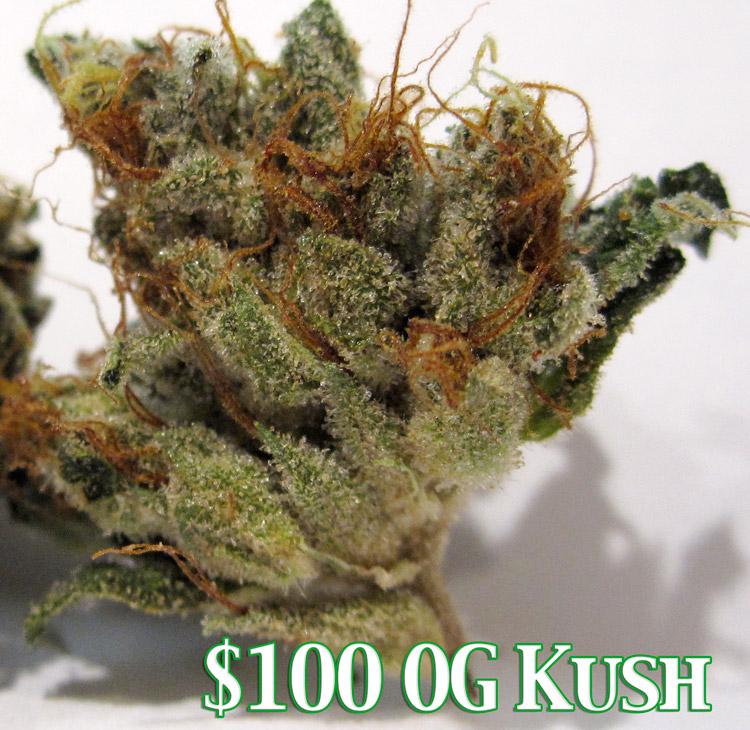 $100 OG Kush