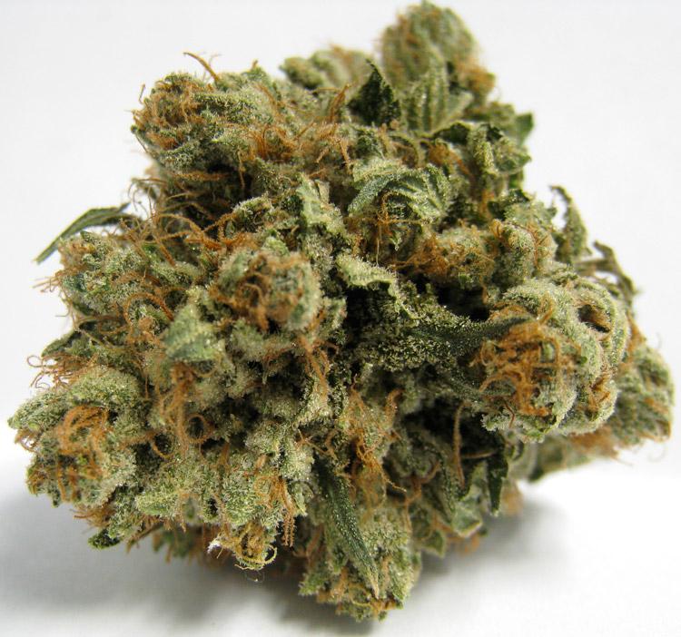 707 Headband Medical Marijuana