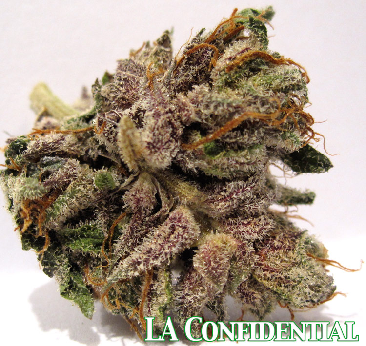 LA Confidential Medical Marijuana