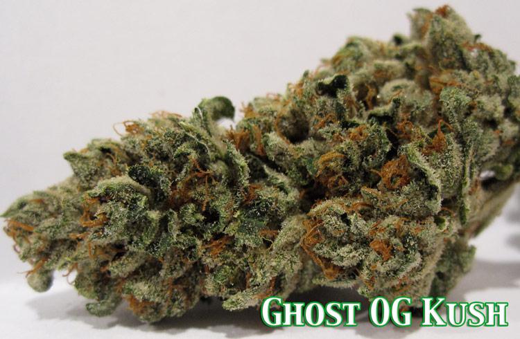 Ghost OG Kush