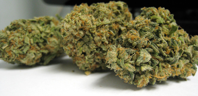 Headband Herojuana Medical marijuana