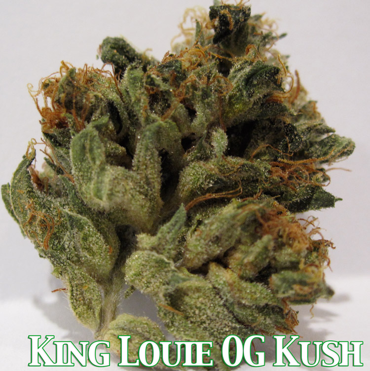 Kind Louie OG Kush