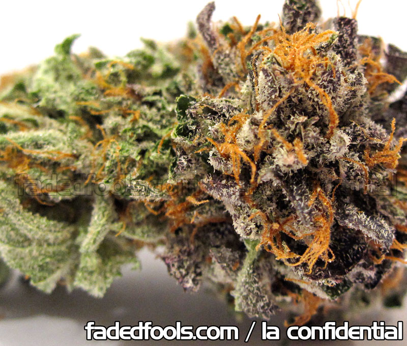 LA Confidential Medical Weed