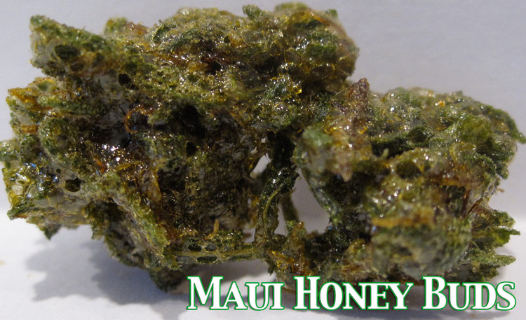 Maui Honey Buds (butane hash Oil nugs)