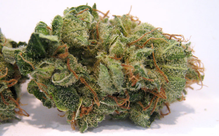 Pineapple Express Medical Marijuana